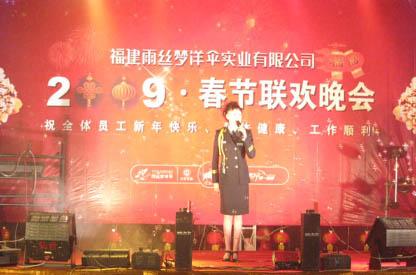 雨丝梦:2009年春节联欢晚会