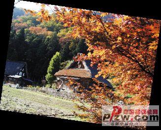 秋游日本从富士山开始