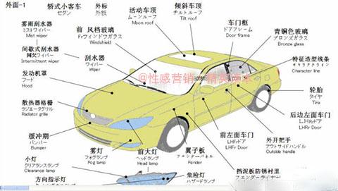 一套汽车解剖图:轻松成为故障诊断专家